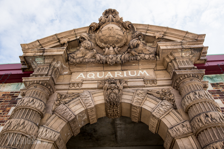 Explore Detroit - Belle Isle Aquarium - 2015-1