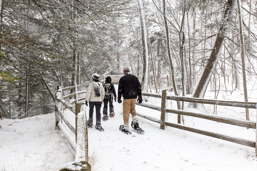 Pictured Rocks Snowshoe - U.P. Winter - 2014 - 18