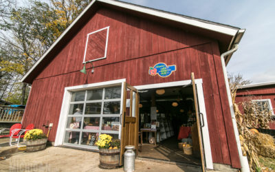 Capturing the Spirit of Fall at Dexter Cider Mill