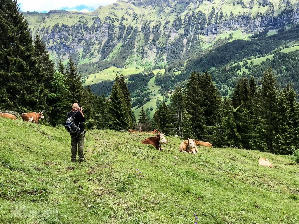 Switzerland Day 1-2016-73