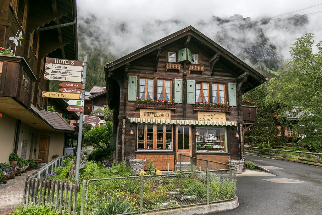 Switzerland Day 3-2016-11