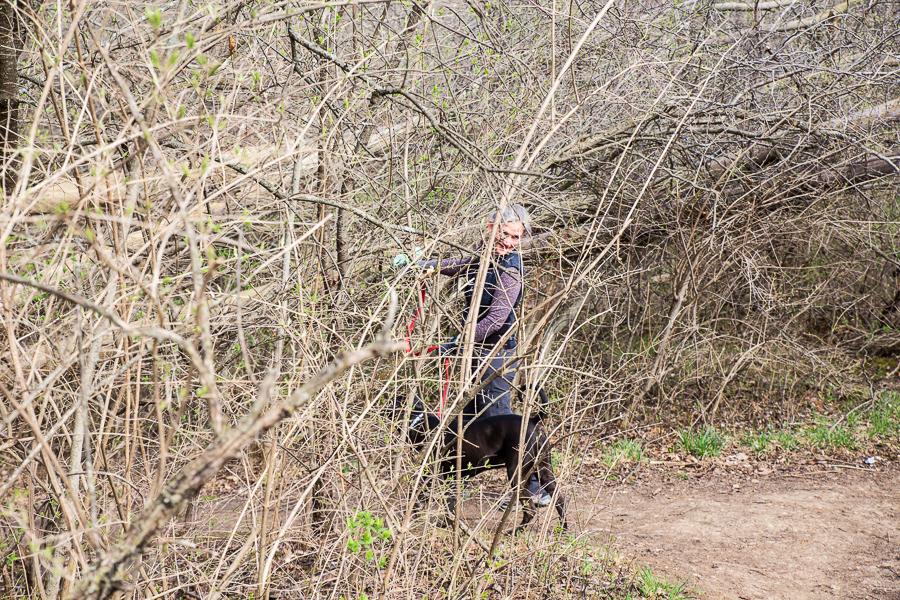 Ann Arbor Trails - Leslie -2015-12