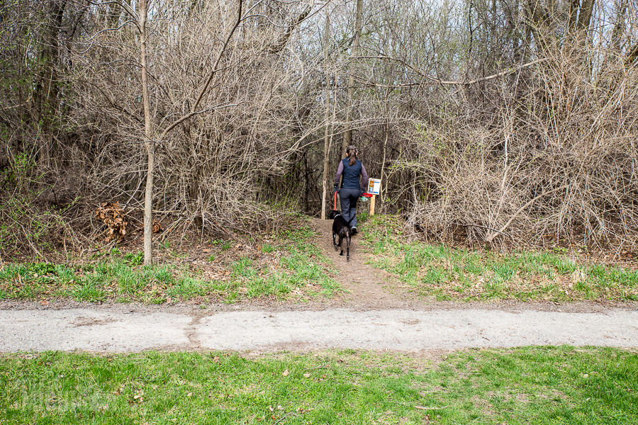 Ann Arbor Trails - Leslie -2015-18