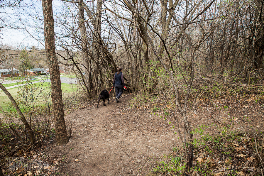 Ann Arbor Trails - Leslie -2015-19