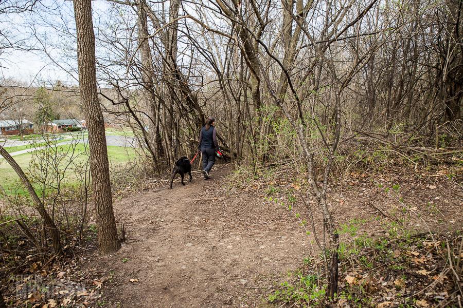 Ann Arbor Trails - Leslie -2015-19