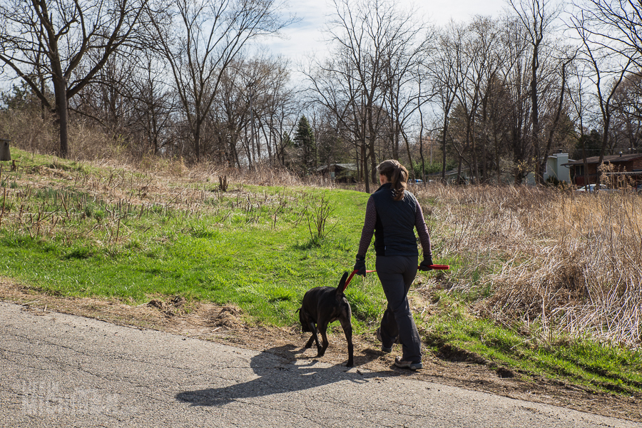 Ann Arbor Trails - Leslie -2015-2