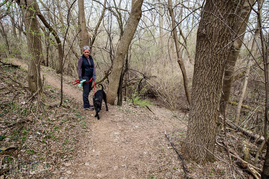 Ann Arbor Trails - Leslie -2015-23