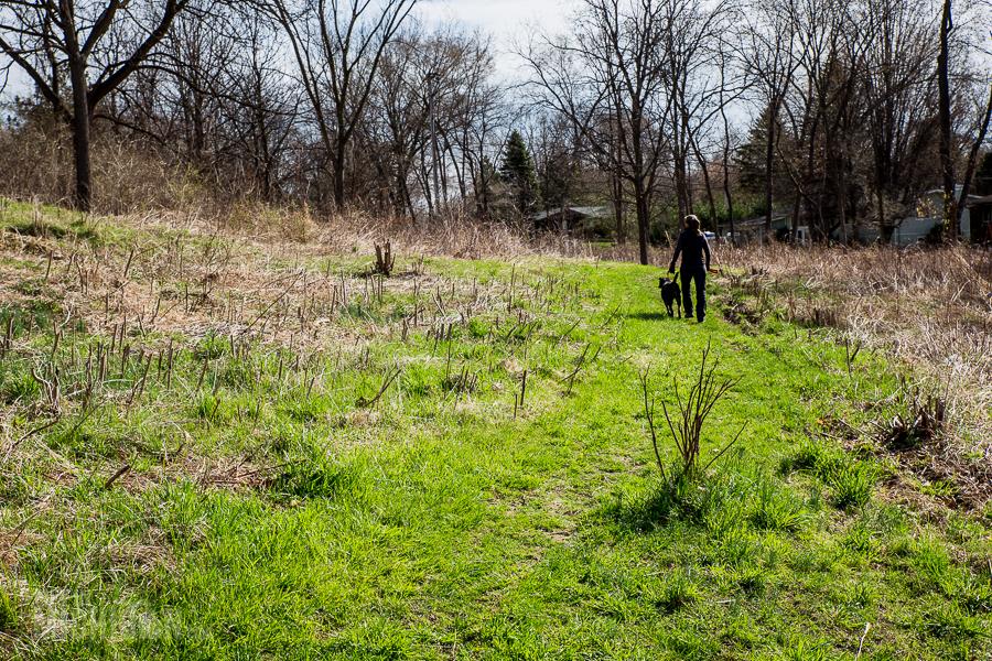 Ann Arbor Trails - Leslie -2015-3