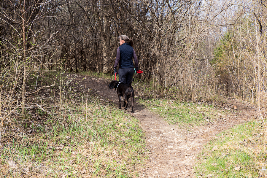 Ann Arbor Trails - Leslie -2015-30