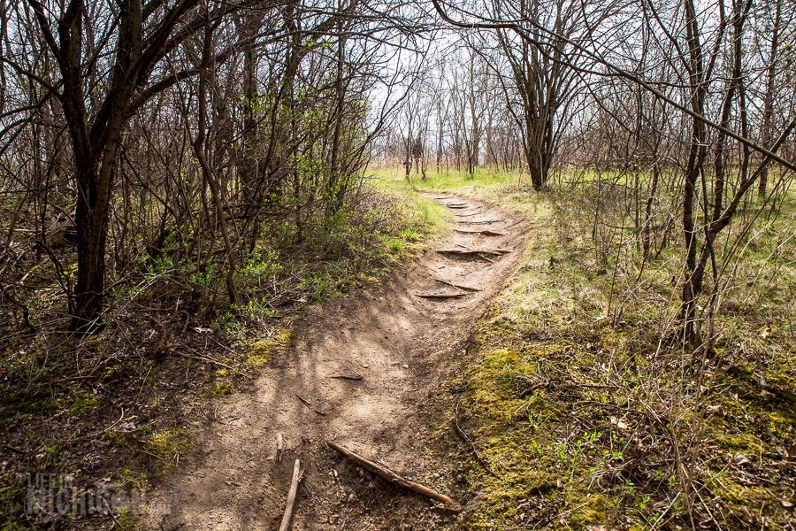 Ann Arbor Trails - Leslie -2015-31
