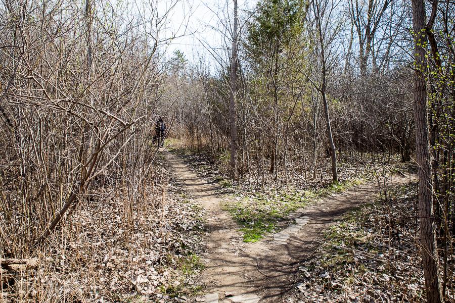 Ann Arbor Trails - Leslie -2015-35