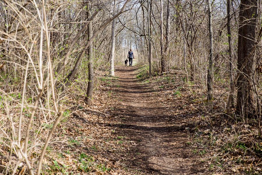 Ann Arbor Trails - Leslie -2015-5