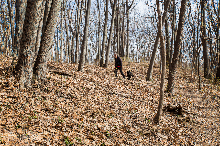 Ann Arbor Trails - Leslie -2015-8