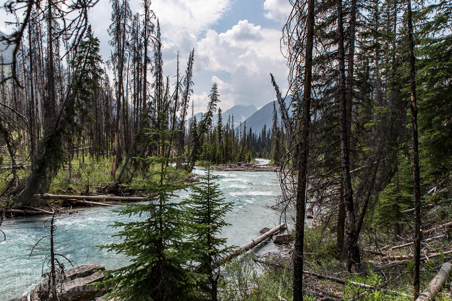 Banff - Day 3-17