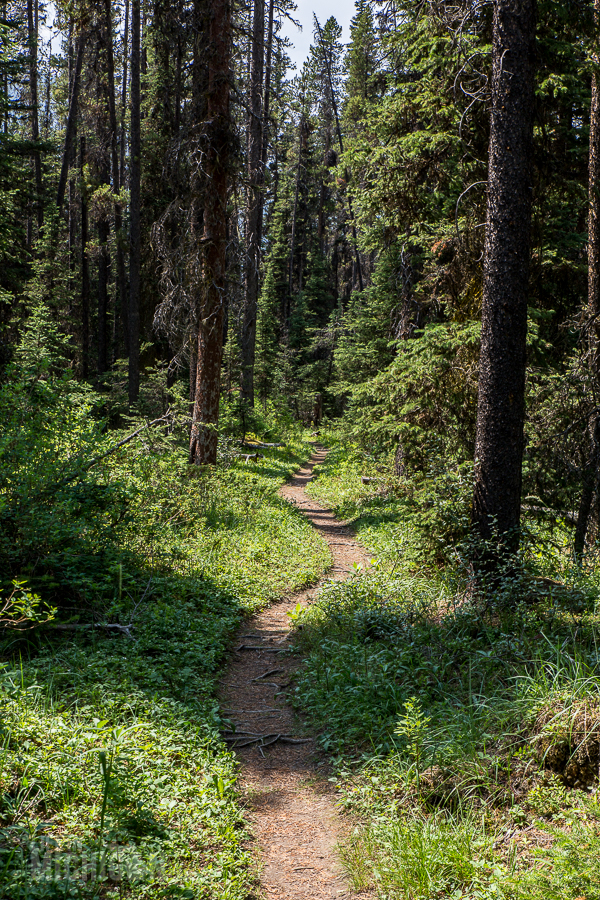 Banff - Day 3-19
