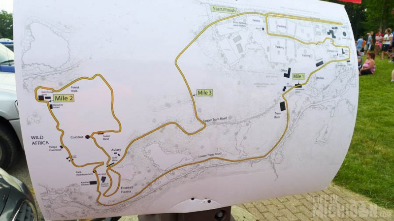 The course for the race