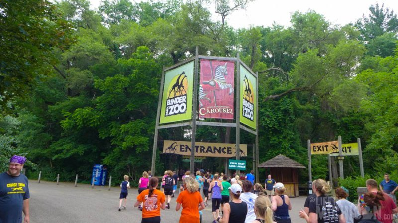 Entering the zoo during the run
