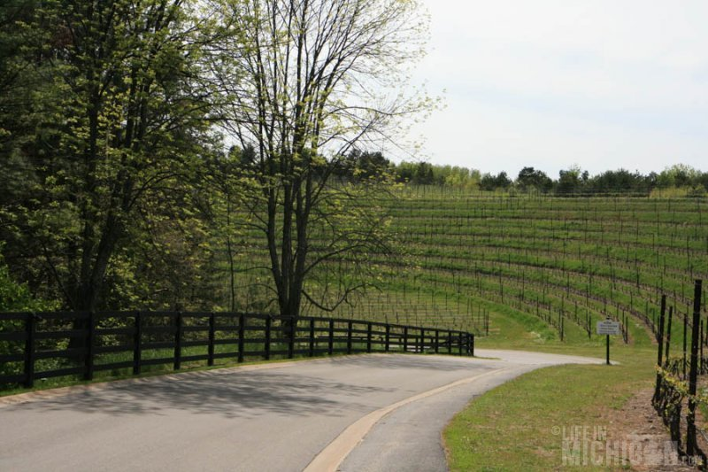 The Long and winding road to Black Star Farms