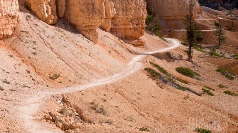 The Fairyland Trail wanders on