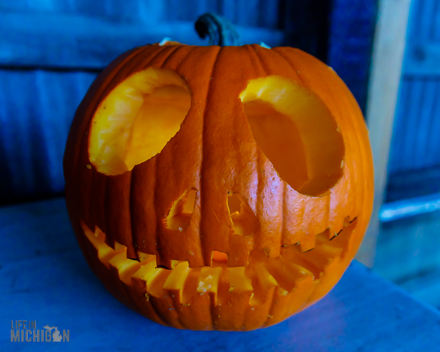 Dark Horse Pumpkins-27