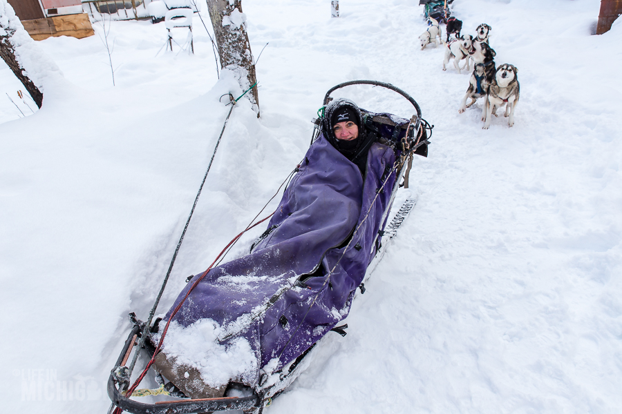 Dog sledding Munising - U.P. Winter - 2014 -9