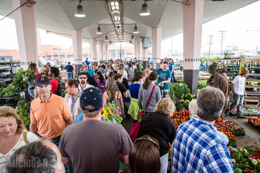 Detroit's Eastern Market Flower Day - 2015-10