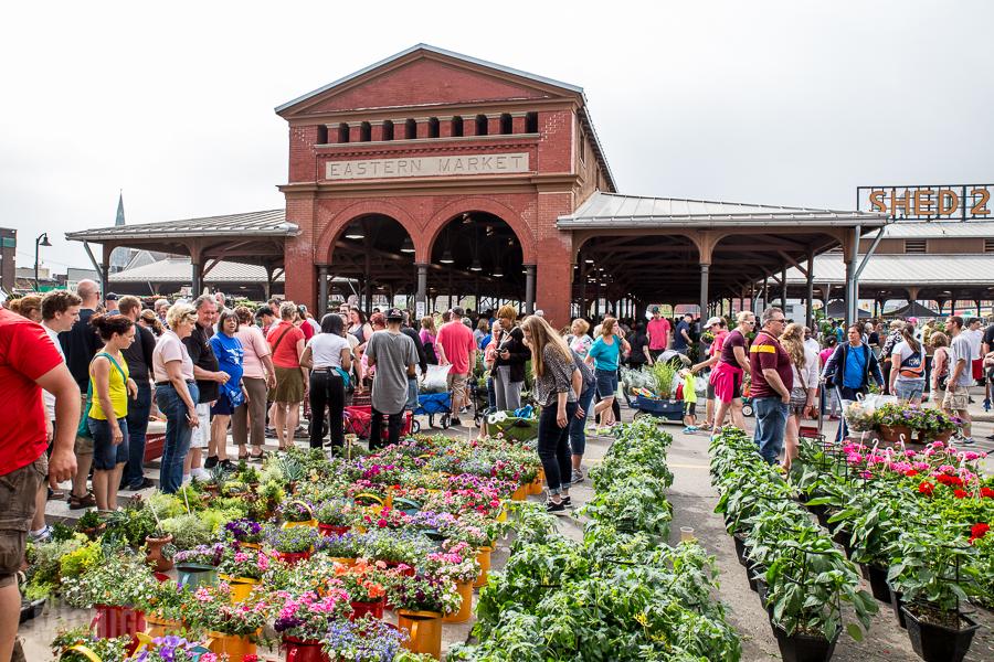Detroit's Eastern Market Flower Day - 2015-26