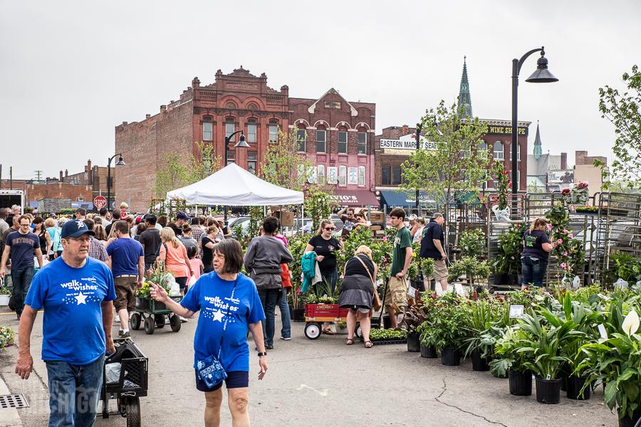 Detroit's Eastern Market Flower Day - 2015-38