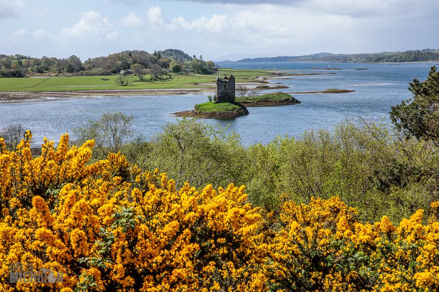 Dunrobin Castle Scotland 2018-27