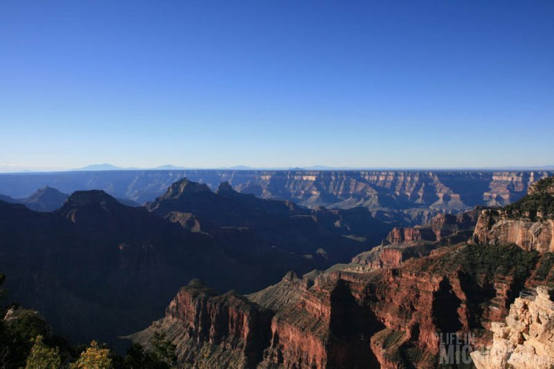 Great views on the Transept Trail North rim Grand Canyon