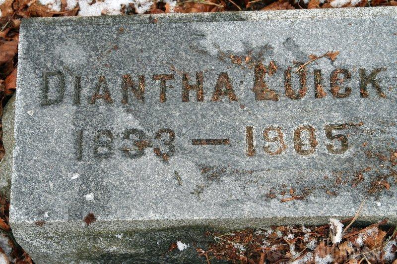 Diantha Luick 1833 - 1905