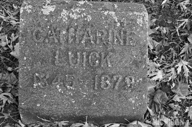 Catherine Luick 1845 - 1879