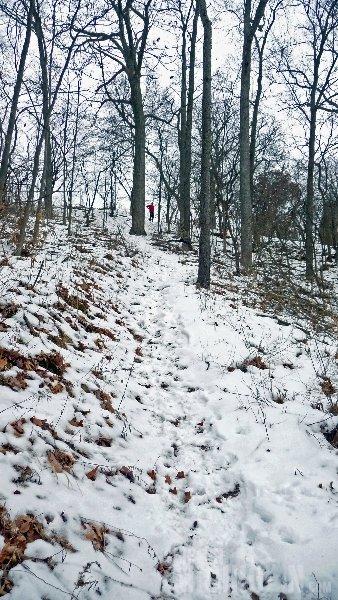 Michigan Winter Trail Running