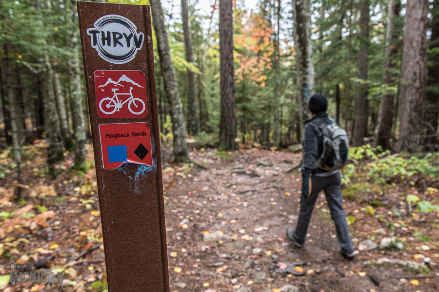 Northern Michigan Fall Color Tour Itinerary-Hogback