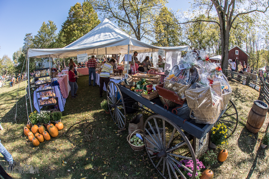 Pioneer Day at the Waterloo Farm Museum - 2017-11