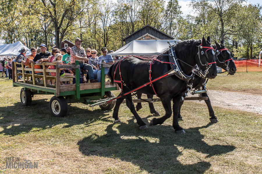 Pioneer Day at the Waterloo Farm Museum - 2017-98