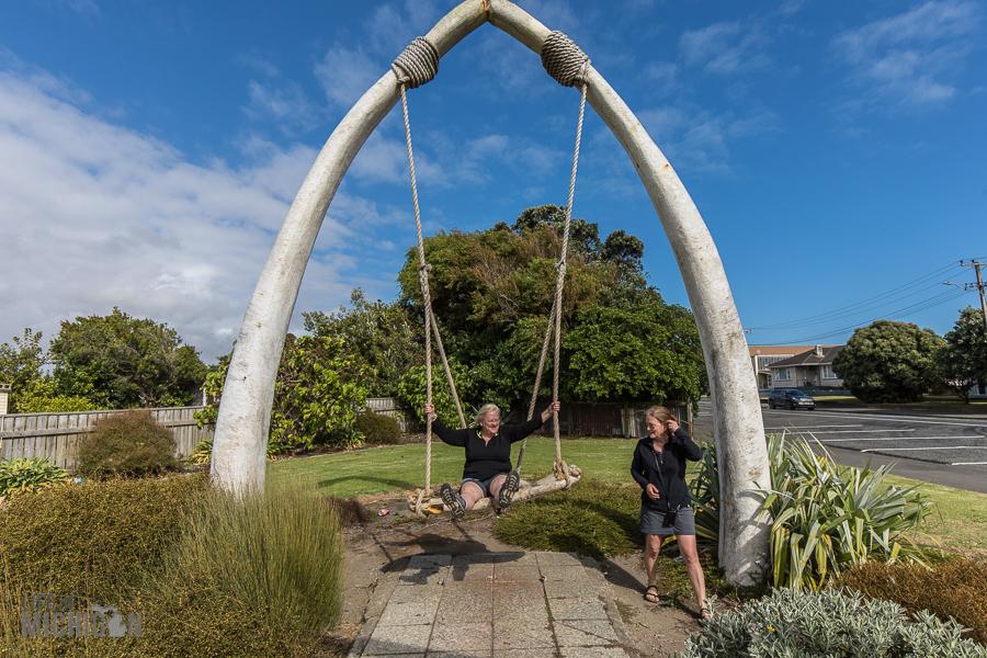 Travel-Ideas-North-Island-New-Zealand-17