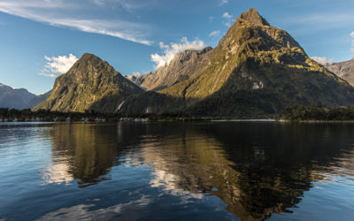 Diving Deep into Milford Sound in New Zealand