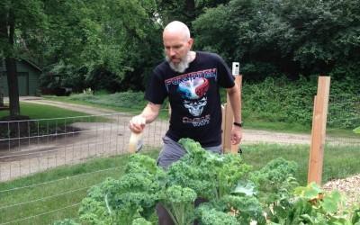 Garden Apocalypse: The Cabbage Looper Invasion