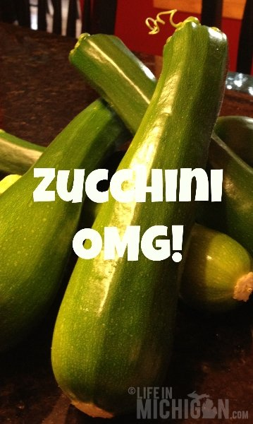 Zucchini Recipes for Meatloaf and Hash